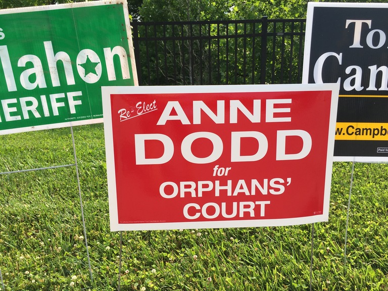 Anne Dodd small campaign sign, 2018 elections