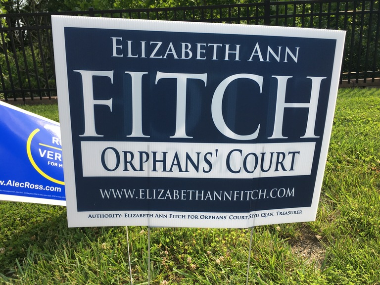 Elizabeth Ann Fitch small campaign sign, 2018 elections