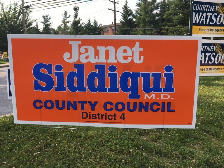 Janet Siddiqui small campaign sign, 2018 elections