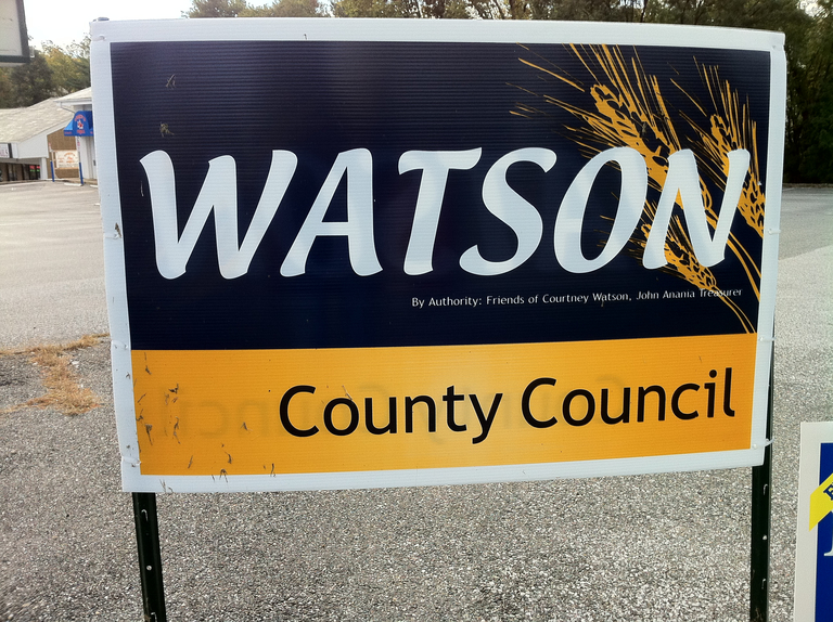 Courtney Watson for County Council (2010)