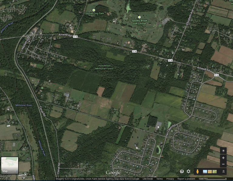 Satellite image of Hutcheson Forest