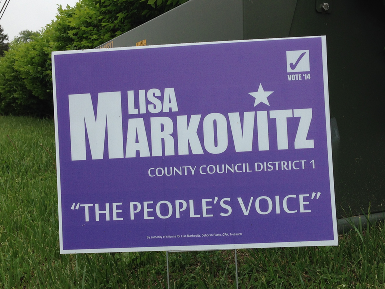 markovitz-county-council-1-2014-small